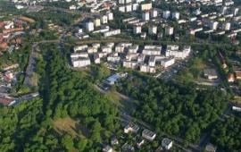 Zielony Toruń